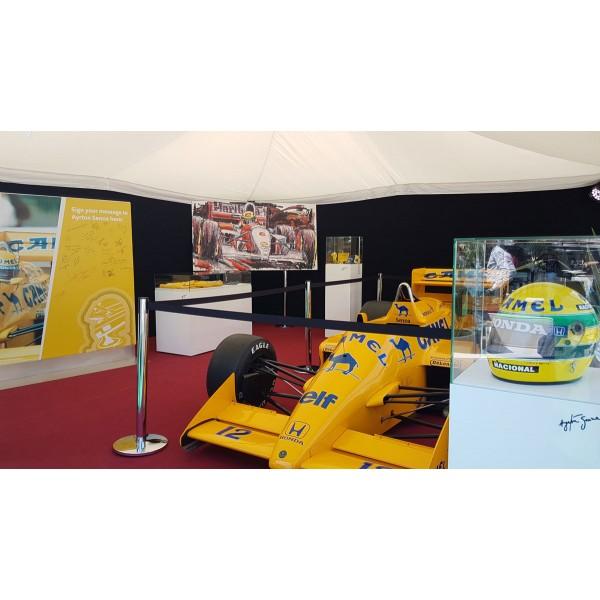 Ayrton Senna reproduction d'art McLaren 1993 par Armin Flossdorf