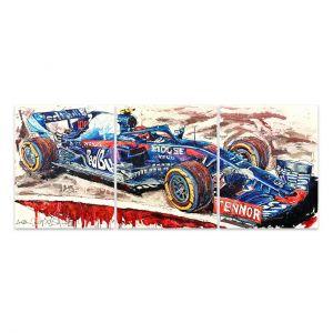 Kunstwerk Toro Rosso 2019 #0029