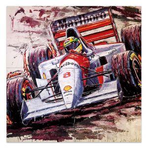 Kunstwerk Ayrton Senna #0059