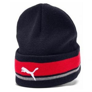 Aston Martin Red Bull Racing Official Teamline Beanie